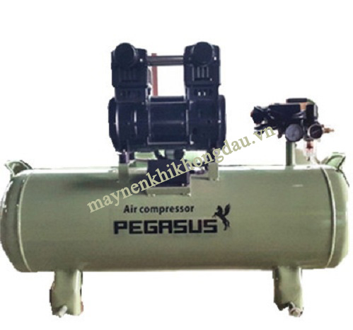 Pegasus TM-OF1500-70L là mẫu máy nén khí cho thợ lặn được khuyên dùng