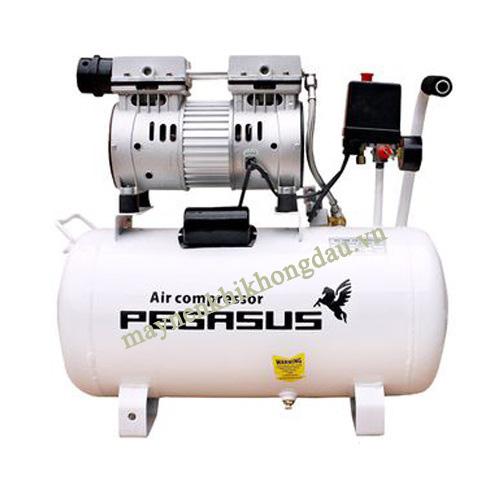 Máy nén khí giảm âm Pegasus đem đến một giải pháp tối ưu cả về chất lượng khí nén, và độ ồn